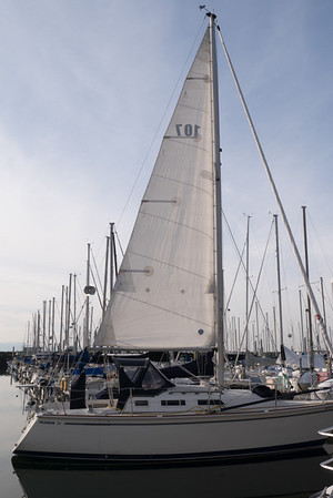 lower halyard tension