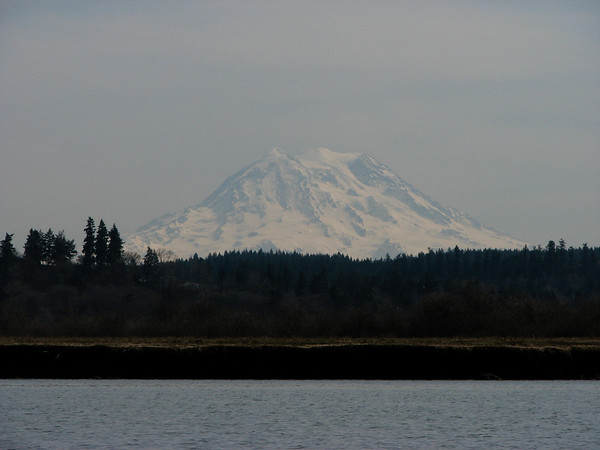 Mudflats in the foreground, Mt Rainier in the background.