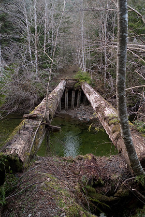 Abandoned bridge across from Sunday Creek Trailhead