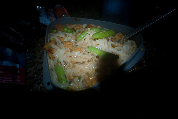 A nice thing about S24O's is that you can bring fancier food.  This is thai noodles with fresh sugar snap peas, jalapenos, and spiced tofu.  Not bad for a meal out of Jetboil.
